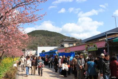 河津桜祭り 露店