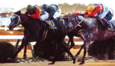 タマモクロス オグリキャップ 有馬記念