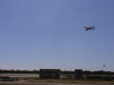 函館競馬場から飛行機が見える