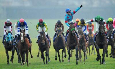 2018有馬記念勝ち馬ブラストワンピース