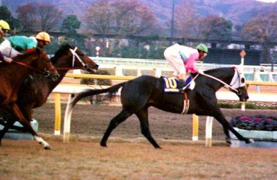 第4回ジャパンカップの勝ち馬カツラギエース