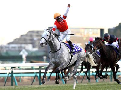 2012年 有馬記念