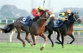 1998年第118回天皇賞(秋)勝ち馬のオフサイドトラップ