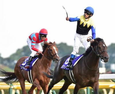 第152回天皇賞(秋)の勝ち馬ラブリーデイ