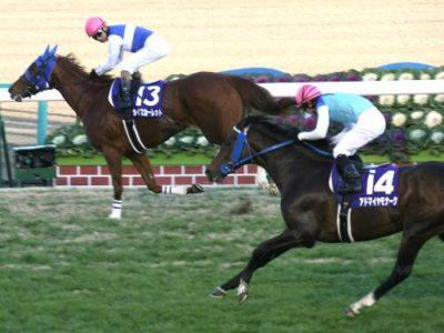 ダイワスカーレットが勝った有馬記念