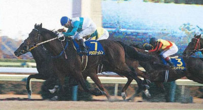 メジロデュレンが勝った有馬記念